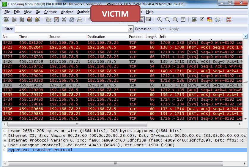 tcp_scanner_victim
